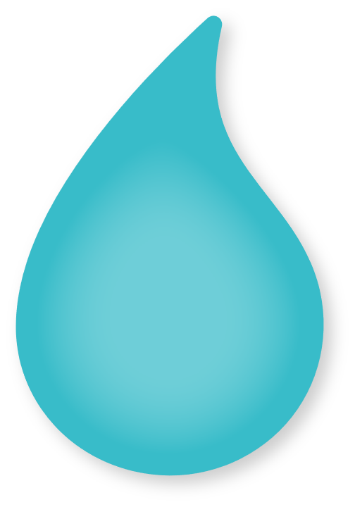 nanatoo logo